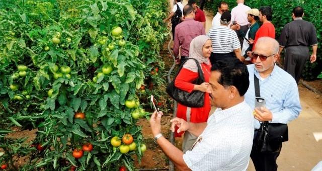 Uluslararası Yaş Sebze Ve Meyve İhracatçıları Zirvesi Serik'te Başlıyor