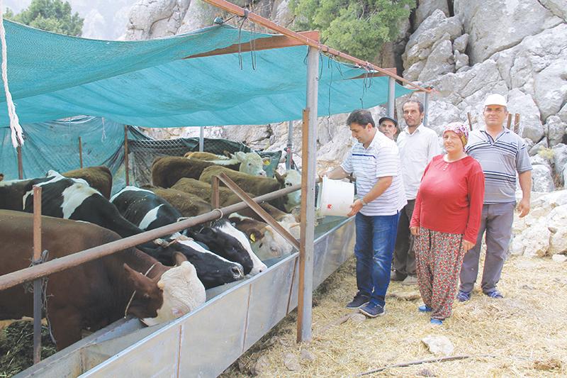 Çömezoğlu'ndan Hayvan üreticisine ziyaret