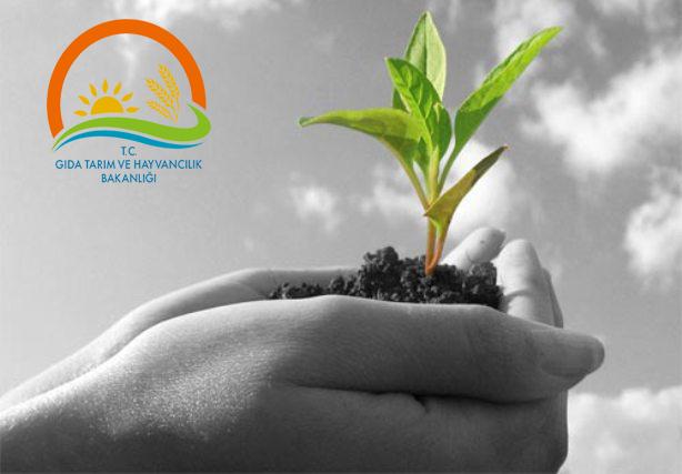 Tarım Danışmanı desteği için son başvuru 30 Ekim!