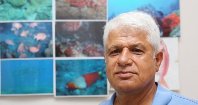 Akdeniz'i 'İşgal Eden' Balık Türü 63'e Çıktı