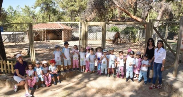 İSTEK'li Minikler Hayvanat Bahçesini Gezdi