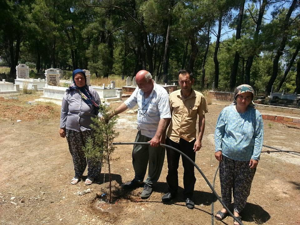Yunuslar Mezarlığı Bakımsızlıktan Ağaçlar Kurudu