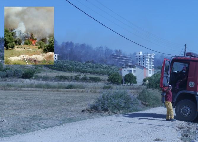 Manavgat'ta 5 Hektar Orman Yandı