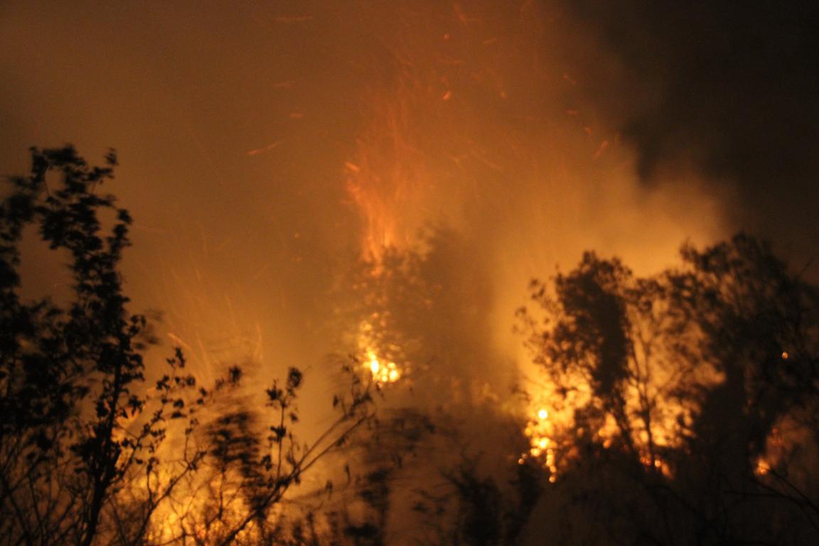 Serik Yazır Tepesinde Korkutan Yangın