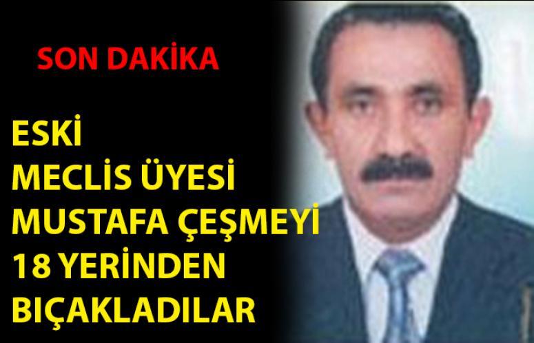 Eski Meclis Üyesini 18 yerinden bıçakladılar